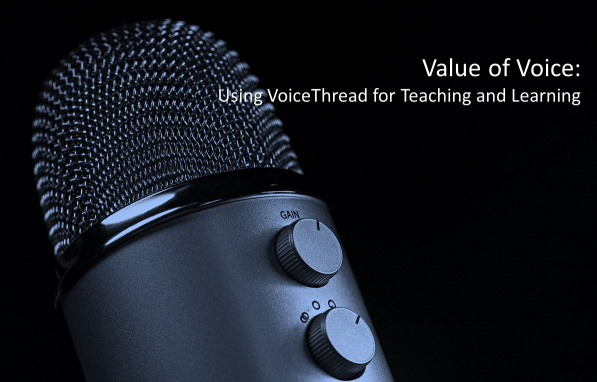 Value-of-voice-1194.jpg